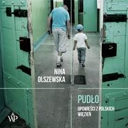okładka Pudło, Audiobook | Nina  Olszewska