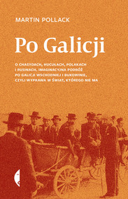 okładka Po Galicji, Ebook | Martin Pollack