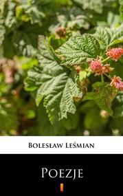 okładka Poezje, Ebook | Bolesław  Leśmian
