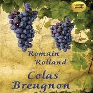 okładka Colas Breugnon, Audiobook | Rolland Romain