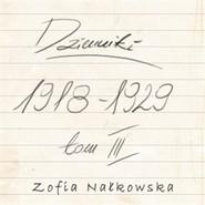 okładka Dzienniki (1918-1929), Audiobook   Zofia Nałkowska