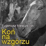okładka Koń na wzgórzu, Audiobook | Eugeniusz Małaczewski
