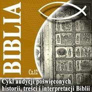 okładka Rozmowy o Biblii cz. 12, Audiobook | Steczkowski Piotr