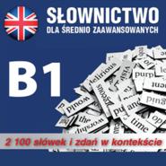 okładka Slownictwo angielskie  poziom B1, Audiobook | Dvoracek Tomas