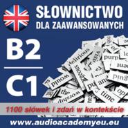 okładka Słownictwo angielskie  poziom B2  C1, Audiobook | Dvoracek Tomas