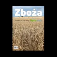 okładka Zboża, Ebook | praca zbiorowa