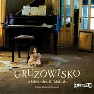 okładka Gruzowisko, Audiobook | Aleksandra Katarzyna Maludy