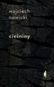 okładka Cieśniny, Ebook | Wojciech Nowicki