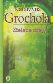okładka Zielone drzwi, Książka | Katarzyna Grochola
