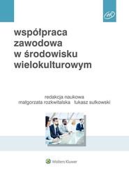 okładka Współpraca zawodowa w środowisku wielokulturowym, Książka | Beata A. Basińska, Michał Chmielecki, Przytuła Sylwia, Małgorzata Rozkwitalska, Łukasz  Sułkowski