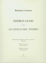 okładka Źdźbło czasu Lo stelo del tempo, Książka   Bolesław  Leśmian