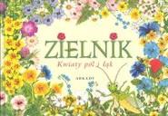 okładka Zielnik Kwiaty pól i łąk, Książka | Rekłajtis-Zawada Agnieszka