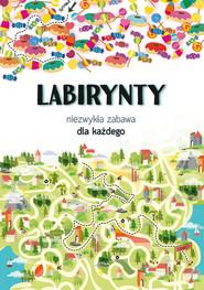 okładka Labirynty Niezwykła zabawa dla każdego, Książka | Kanarkowska Maja