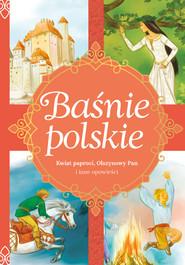 okładka Baśnie polskie Kwiat paproci, Olszynowy Pan i inne opowieści, Książka | Zięba Aleksandra