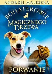 okładka Bohaterowie Magicznego Drzewa. Porwanie, Książka | Andrzej Maleszka