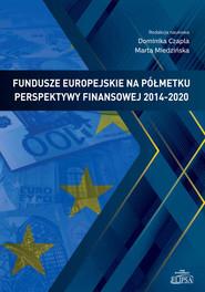 okładka Fundusze europejskie na półmetku perspektywy finansowej 2014-2020, Książka  