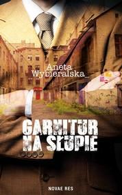 okładka Garnitur na słupie, Książka | Aneta  Wybieralska