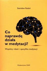 okładka Co naprawdę działa w medytacji? Wspólny rdzeń i specyfika medytacji, Książka | Radoń Stanisław