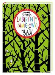 okładka Labirynty i łamigłówki nie z tej ziemi, Książka | Flintham Thomas