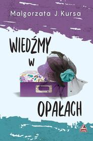 okładka Wiedźmy w opałach, Książka | Kursa Małgorzata