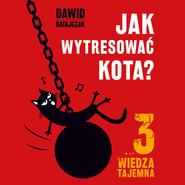 okładka Jak wytresować kota 3. Wiedza tajemna, Audiobook | Dawid Ratajczak