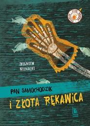 okładka Pan Samochodzik i niesamowity dwór, Książka | Zbigniew Nienacki
