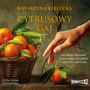 okładka Cytrusowy gaj, Audiobook | Katarzyna Kielecka