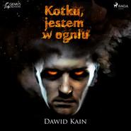 okładka Kotku jestem w ogniu, Audiobook | Dawid Kain