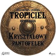 okładka Tropiciel opowiada: Kryształowy pantofelek, Audiobook | Małgorzata Lisińska