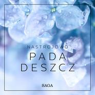 okładka Nastrojowo - Pada deszcz, Audiobook | Broe Rasmus