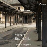 okładka Skok w przepaść - opowiadania, Audiobook | Marcin Radwański