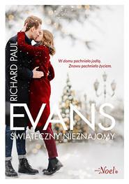 okładka Świąteczny nieznajomy, Książka | Richard Paul Evans