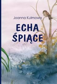 okładka Echa śpiące, Książka | Kulmowa Joanna