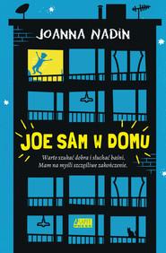 okładka Joe sam w domu, Książka   Joanna Nadin
