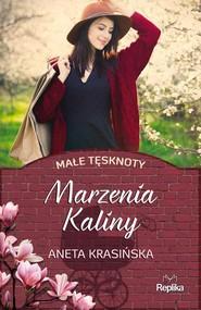 okładka Marzenia Kaliny Małe tęsknoty, Książka | Aneta Krasińska