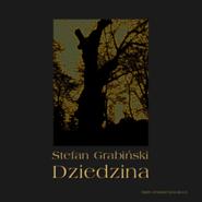 okładka Dziedzina, Audiobook | Stefan Grabiński