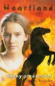 okładka Heartland 7. Blizny przeszłości, Książka | Lauren Brooke