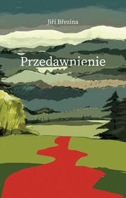 okładka Przedawnienie, Książka | Brezina Jiri