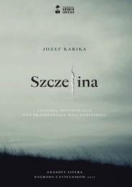 okładka Szczelina, Książka | Jozef Karika