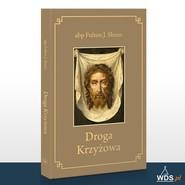 okładka Droga Krzyżowa, Książka | Fulton J. Sheen