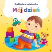 okładka Kapitan Nauka Mój dzień Rozkładana książeczka harmonijka, Książka  