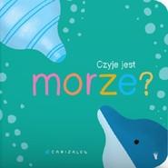 okładka Czyje jest morze?, Książka | Canizales