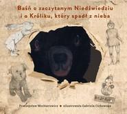 okładka Baśń o zaczytanym Niedźwiedziu i o Króliku, który spadł z nieba, Książka | Przemysław Wechterowicz