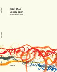 okładka Odległy dzień, Książka | Diab Saleh