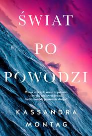 okładka Świat po powodzi, Książka | Montag Kassandra
