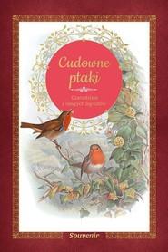 okładka Cudowne ptaki Czarodzieje z naszych ogrodów, Książka | Lesaffre Guilhem