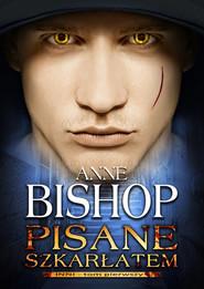 okładka Pisane szkarłatem Tom 1 Inni, Książka   Anne Bishop