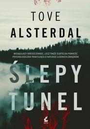 okładka Ślepy tunel, Książka | Tove Alsterdal