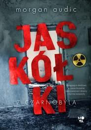 okładka Jaskółki z Czarnobyla, Książka | Morgan Audic