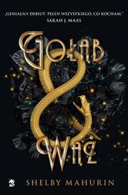 okładka Gołąb i wąż, Książka | Shelby  Mahurin